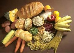Are Carbohydrates to be Blamed for Obesity?'