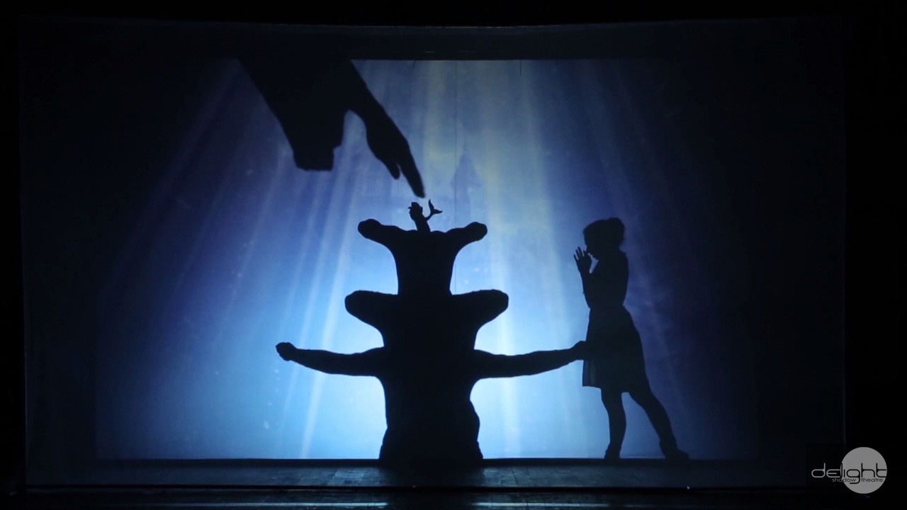 Shadow theatre Delight - Cinderella 3d show