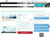 Global Underground Metal Detectors Market Research Report'