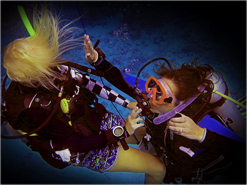 Platinum PADI Course in Gili Islands, Indonesia'