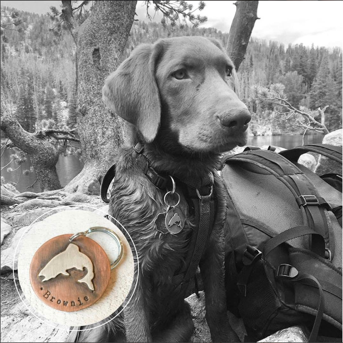 Custom Jumping Trout Pet ID Tag by Hattie Rex.