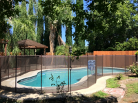 Katchakid Pool Fence