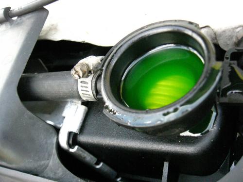 Automotive Antifreeze'