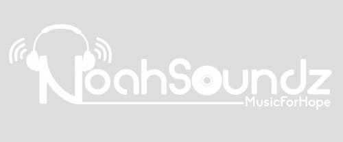 Company Logo For NoahSoundz'