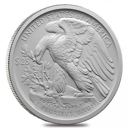 Palladium Eagle back'