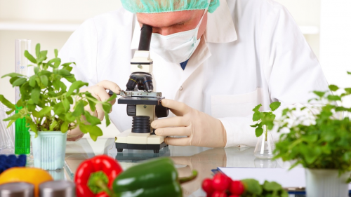 Food Biotechnology Market : Global Opportunity Analysis 2017'