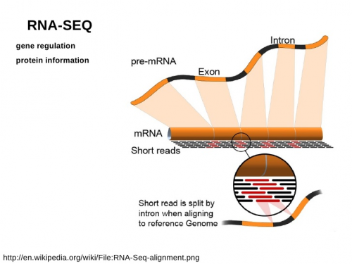 RNA Sequencing Market : technological 2017-2023'