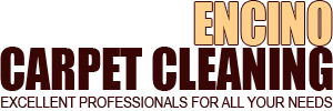 Company Logo For Carpet Cleaning Encino'