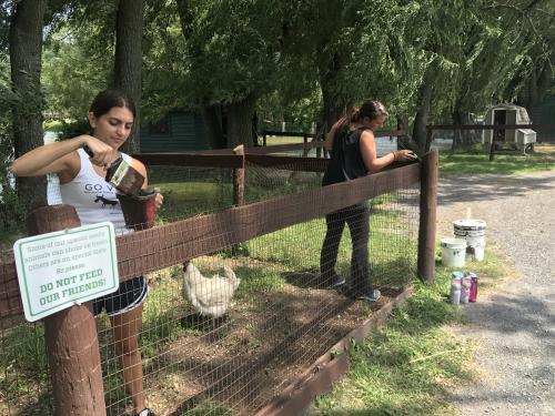 ISF Youth at Catskill Sanctuary'