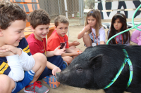 Helen Woodward Animal Center Youth Day with ISF