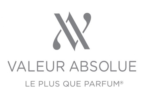Company Logo For Valeur Absolue'