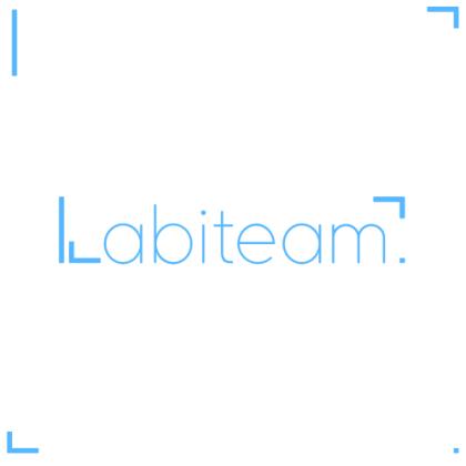 Company Logo For Labiteam'
