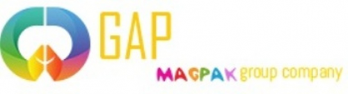 Company Logo For GAP Infotech'