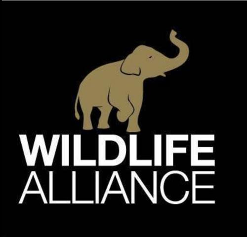 Company Logo For Wildlife Alliance'