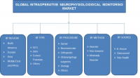 Intraoperative Neurophysiological Monitoring Market