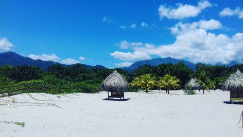 Playa Vida Honduras'