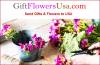 Giftflowersusa