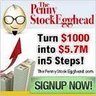 Penny Stock Egghead'