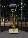 RapidValue Gold Stevie Awards'
