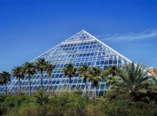 Transparent Solar Technologies'