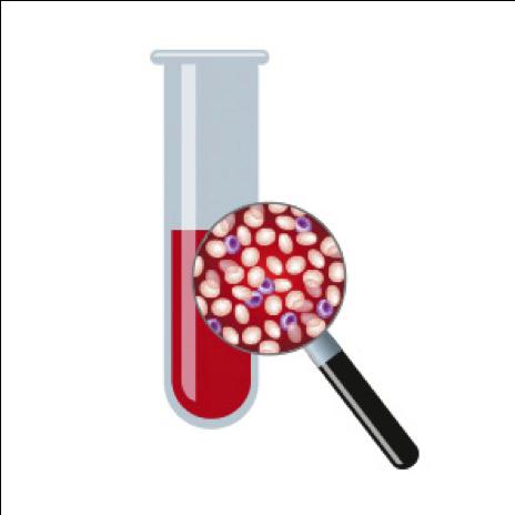 Liquid Biopsy Market'