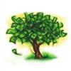 PennyStocks101.com'