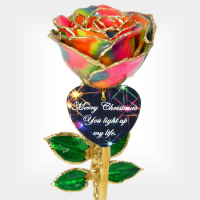 Rainbow Christmas Rose