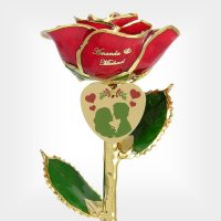 Under the Mistletoe Rose