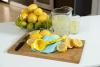 Lemon_Squeezer_Product.jpg'