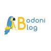 Bodoni Blog