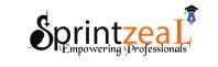 Big Data training in Bangalore Logo