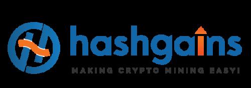 Company Logo For HashGains'