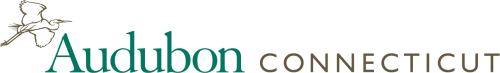 Company Logo For Audubon Connecticut'