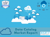 Data Catalog Market
