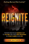 Reignite book cover'