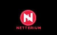 NetCheckr Logo