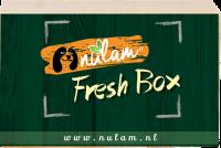 Nulam Nulam Logo