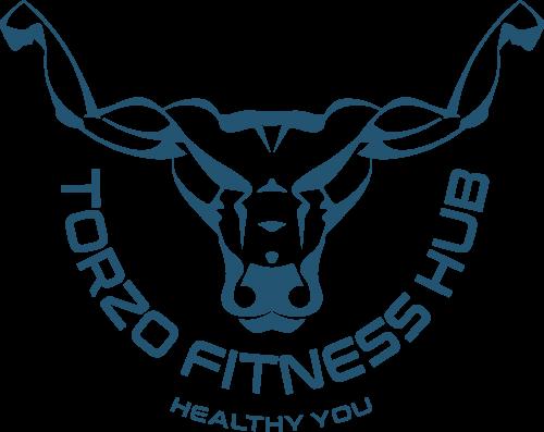 Company Logo For TORZO FITNESS HUB'