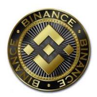 coinsupportnumber Logo