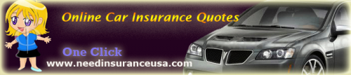 Logo for need insurance usa'