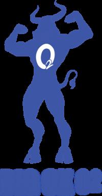 Big Ox O2 Logo