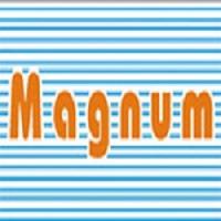 Magnum Telesystem Logo