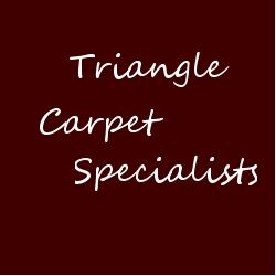 Triangle Carpet Specialists logo'