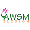Awsm Blossom Kurukshetra Florist