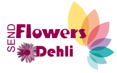 Latest News about Offers & Services Providing By Florist'