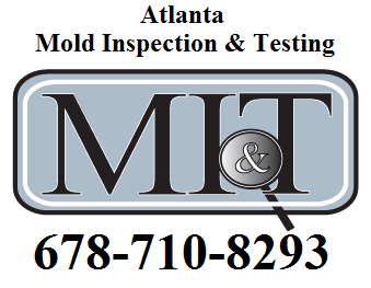 Mold Inspection & Testing'