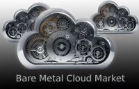 Bare Metal Cloud Market Analysis by Service Type, Enterprise
