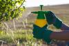 Herbicides Market'