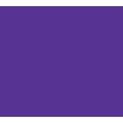 ZetaIndia Logo