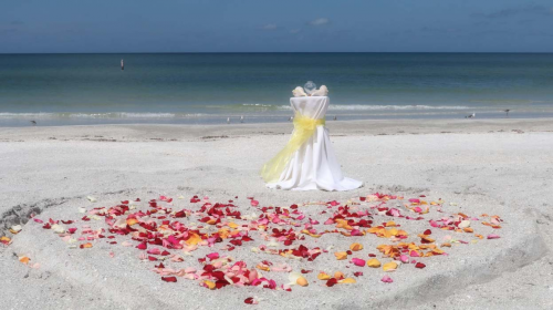 Florida Beach Weddings on a Budget'